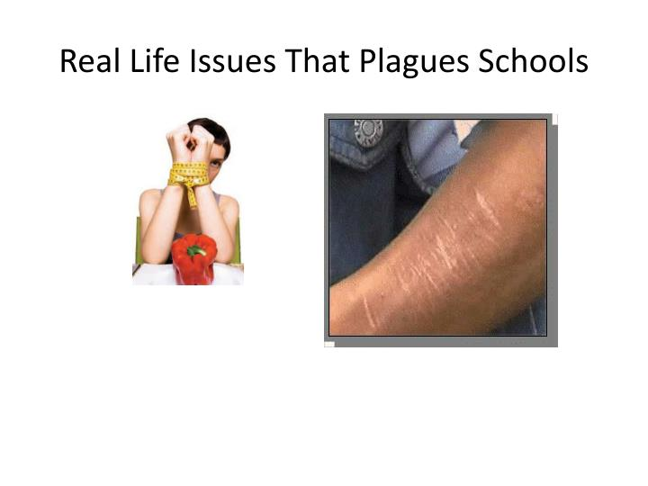 Real Life Issues That Plagues Schools