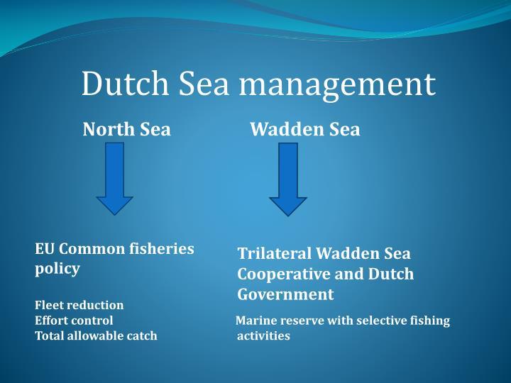 Dutch Sea management