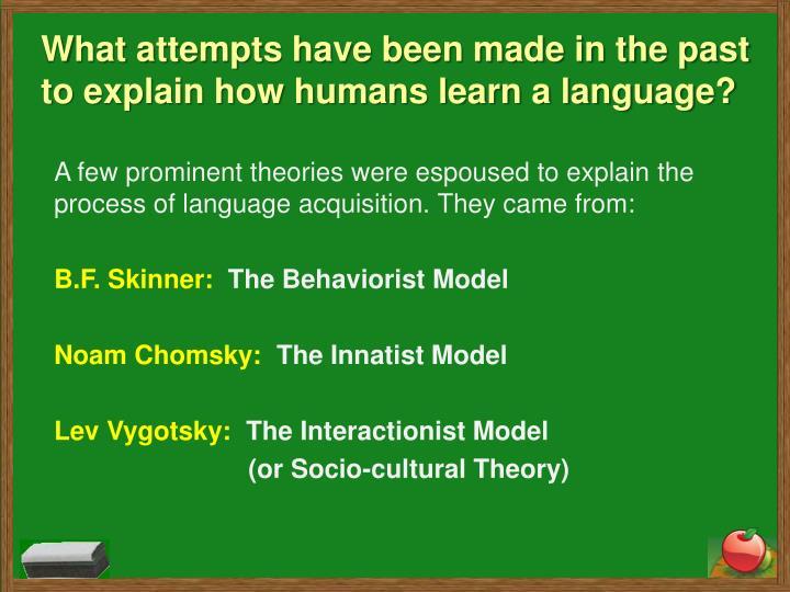 bf skinner theory of language development