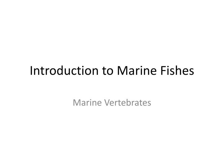 introduction to marine fishes n.