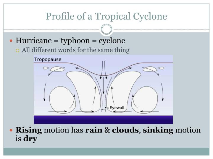 Profile of a Tropical Cyclone