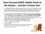 over focused adhd rabbit tends to his garden and don t bother him
