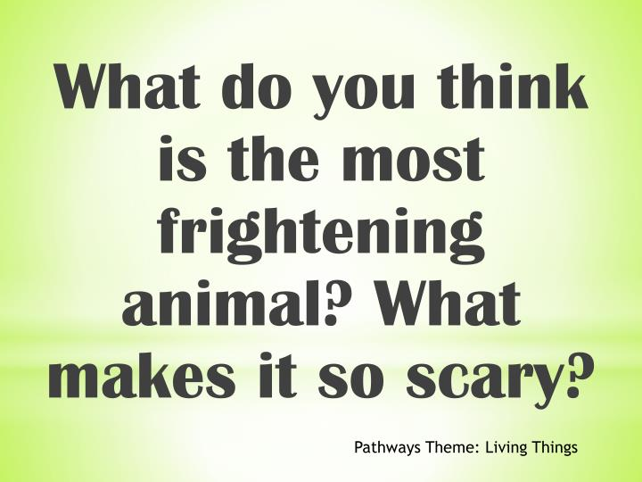 What do you think is the most frightening animal? What makes it so scary?