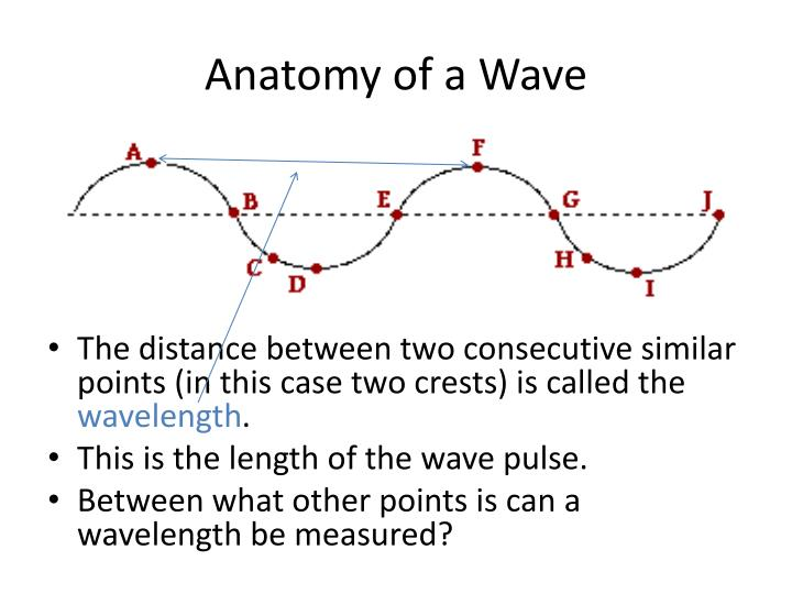 PPT - Waves PowerPoint Presentation - ID:1961842