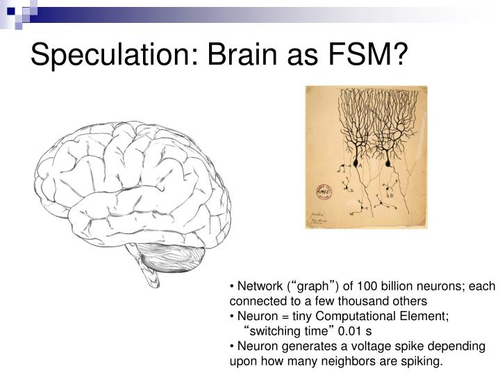 Speculation: Brain as FSM?