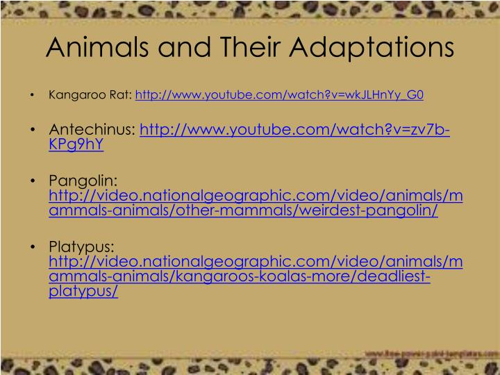 Animals and Their Adaptations