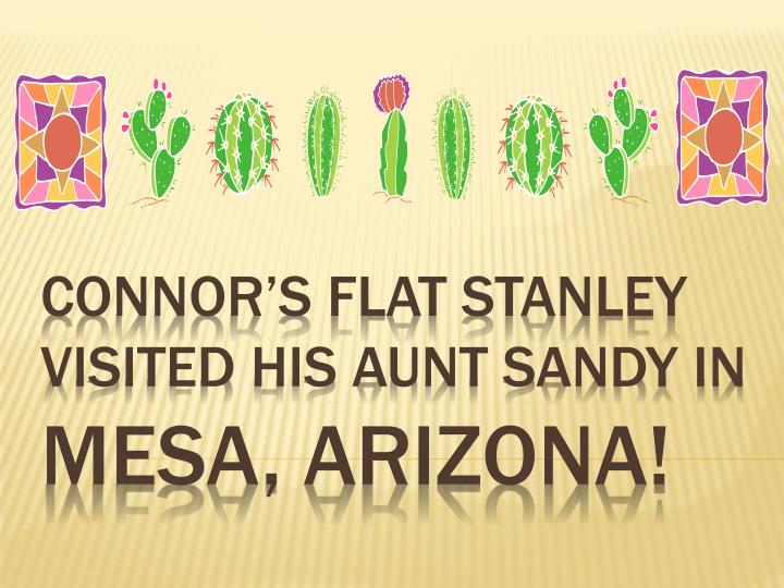 connor s flat stanley visited his aunt sandy in mesa arizona n.