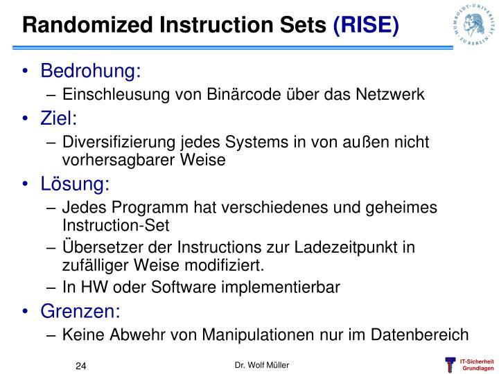 Randomized Instruction Sets