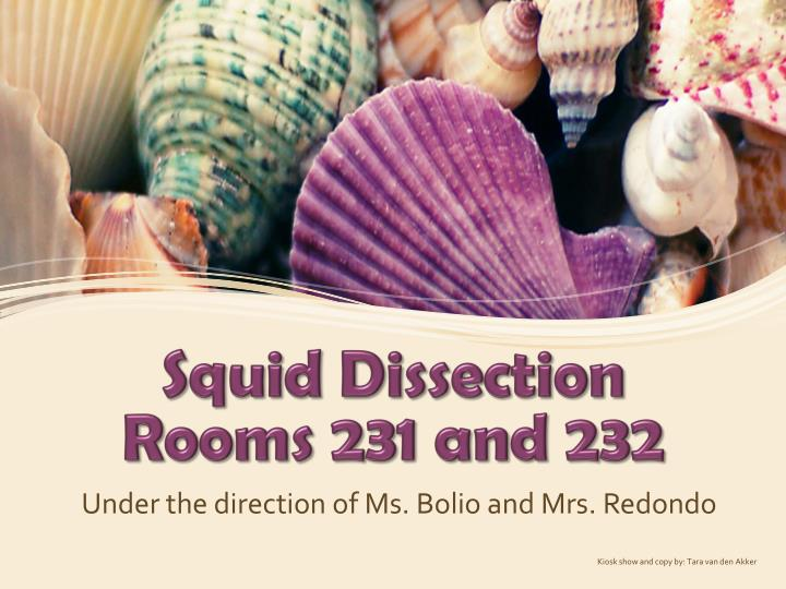 squid dissection rooms 231 and 232 n.