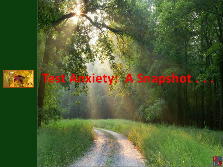 Test Anxiety:  A Snapshot . . .