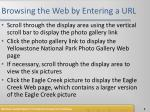 browsing the web by entering a url1