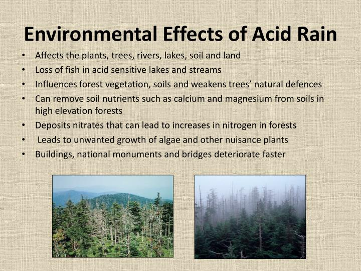 the features of acid rains and its effects Lsd (lysergic acid diethylamide), first synthesized in 1938, is an extremely potent hallucinogen it is synthetically made from lysergic acid, which is found in ergot, a fungus that grows on rye and other grains.