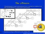 the g process1