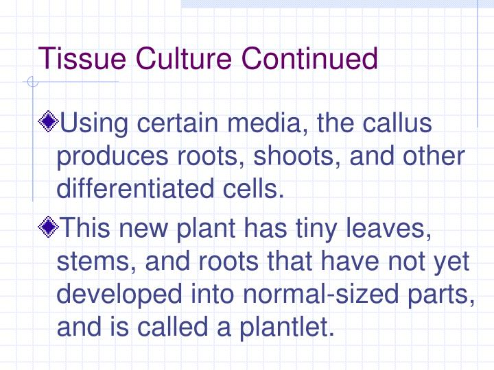 Tissue Culture Continued