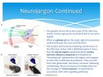 neurojargon continued