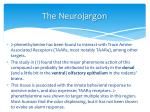the neurojargon