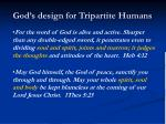 god s design for tripartite humans