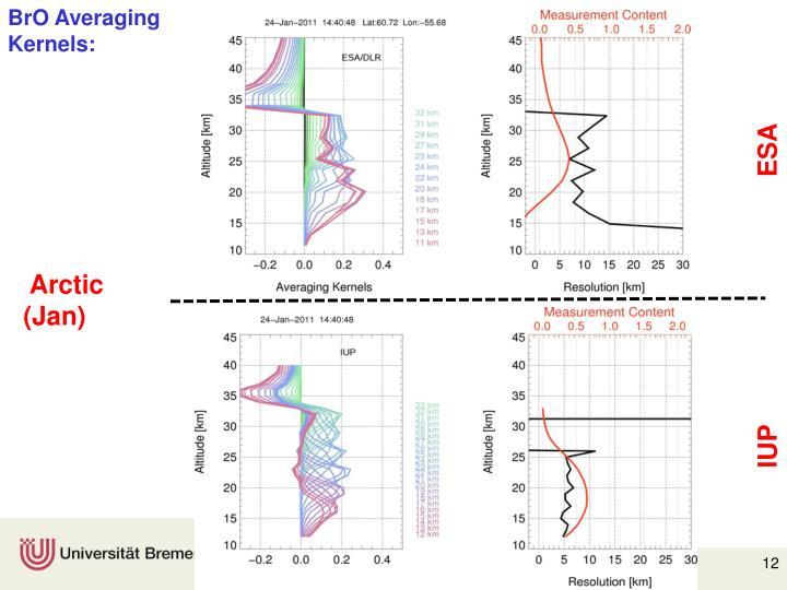 BrO Averaging Kernels: