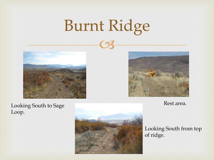 Burnt Ridge