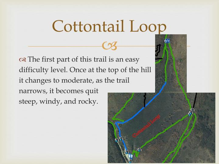 Cottontail Loop