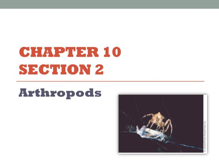 chapter 10 section 2 n.