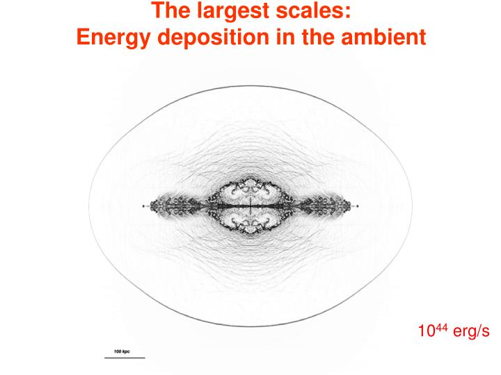 The largest scales: