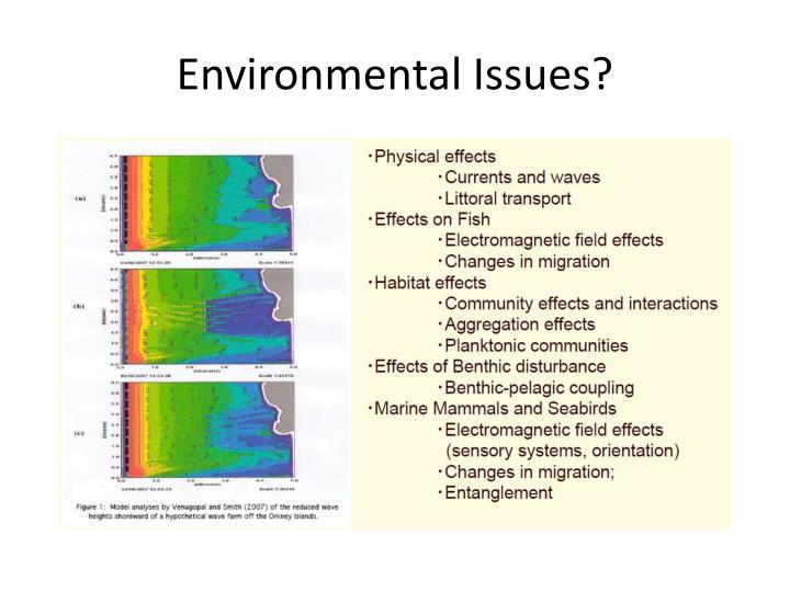 Environmental Issues?