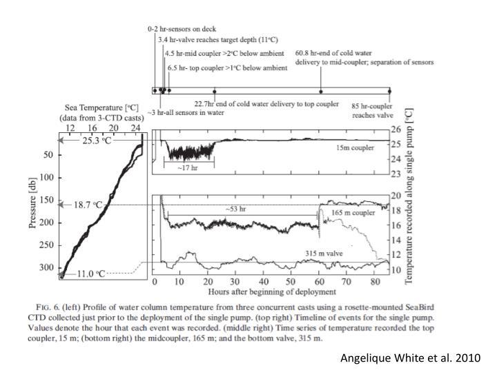 Angelique White et al. 2010