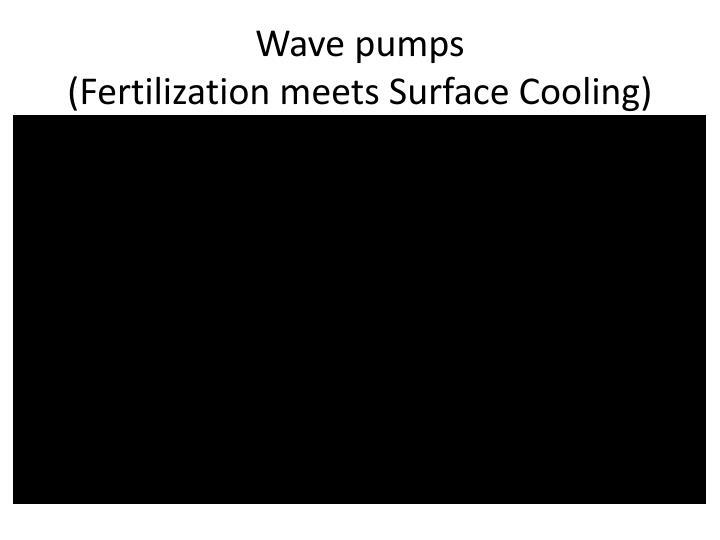 Wave pumps