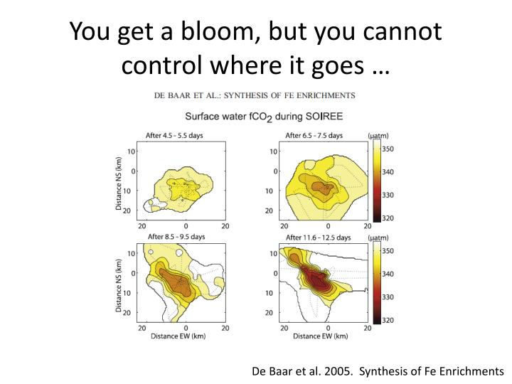 You get a bloom, but you cannot control where it goes …