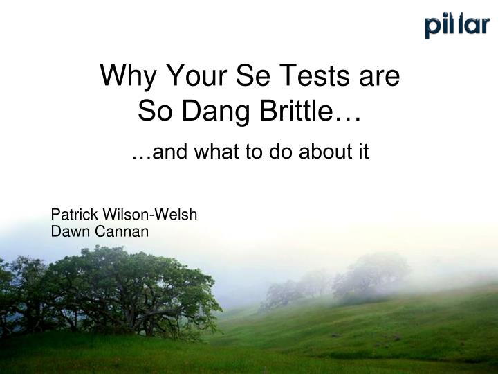 Why your se tests are so dang brittle and what to do about it