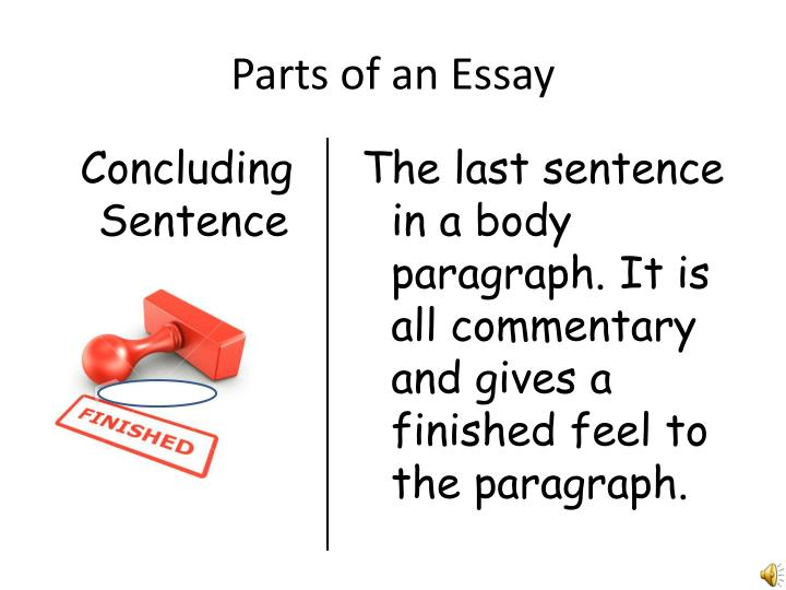 parts of an essay terms How to write an essay in the last part of our guide, we looked at how essays work and discussed the structure and planning of an essayif you haven't read it, you should go check that out first in this part, we'll get into the nitty-gritty of writing the essay and give you some tips for producing band 6 responses in exam conditions.