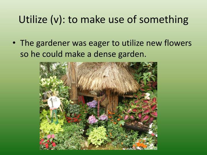 Utilize (v): to make use of something