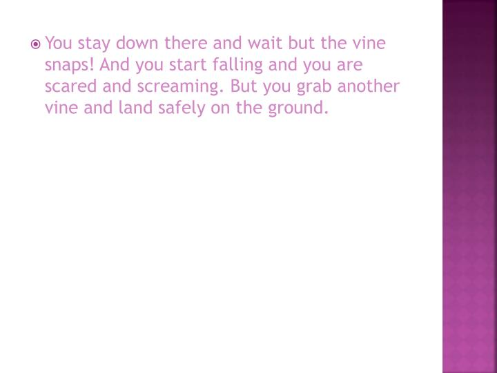 You stay down there and wait but the vine snaps! And you start falling and you are scared and screaming. But you grab another vine and land safely on the ground.