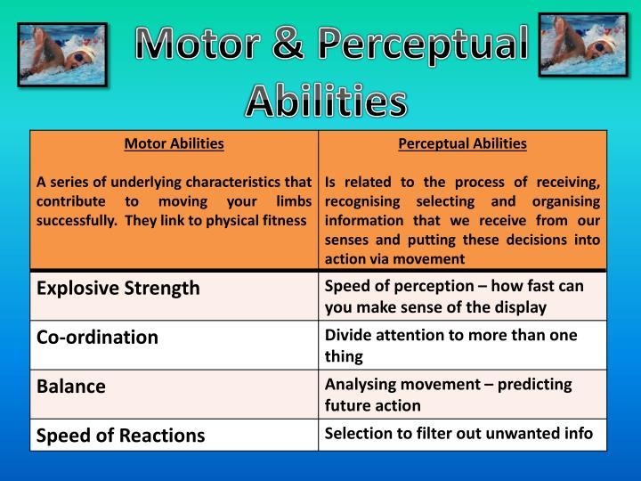 Motor & Perceptual