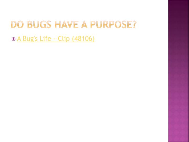 Do bugs have a purpose