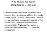 why should we worry about ozone depletion