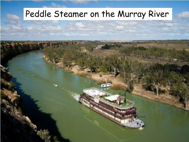 Peddle Steamer on the Murray River