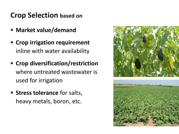 Crop Selection