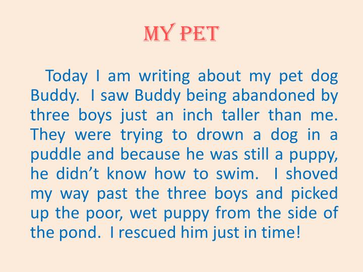 My pet1