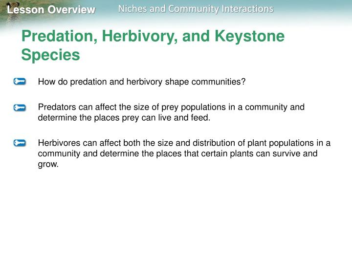 Predation, Herbivory, and Keystone Species