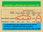 superficie cultivada por estratos