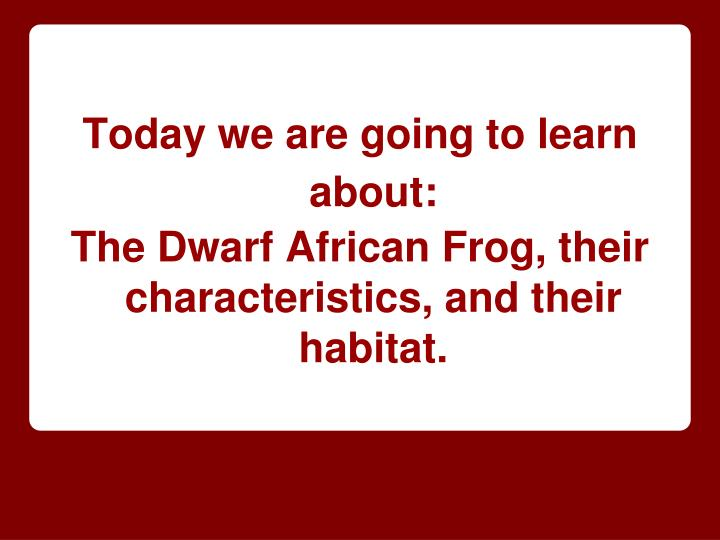 Today we are going to learn about: