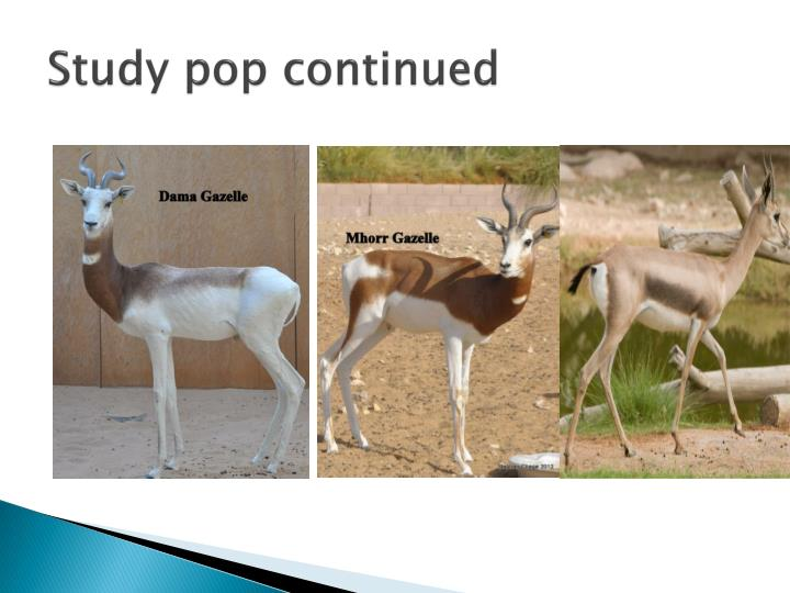 Study pop continued