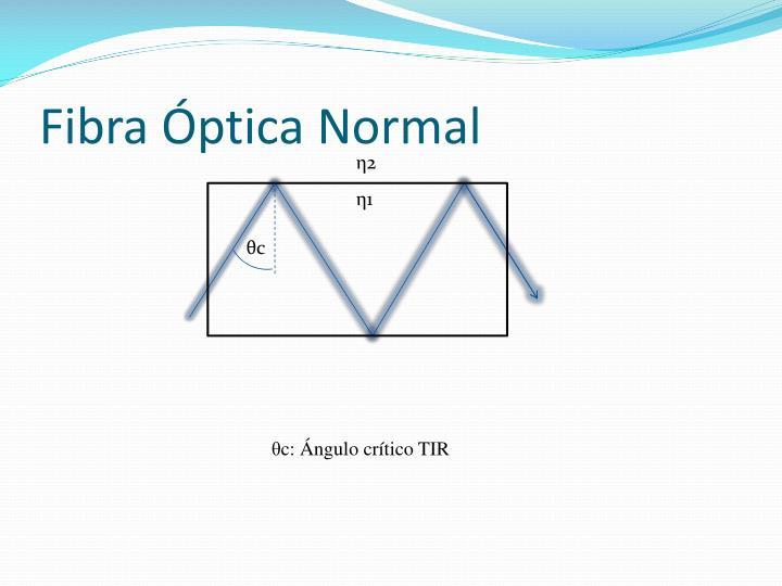 Fibra Óptica Normal