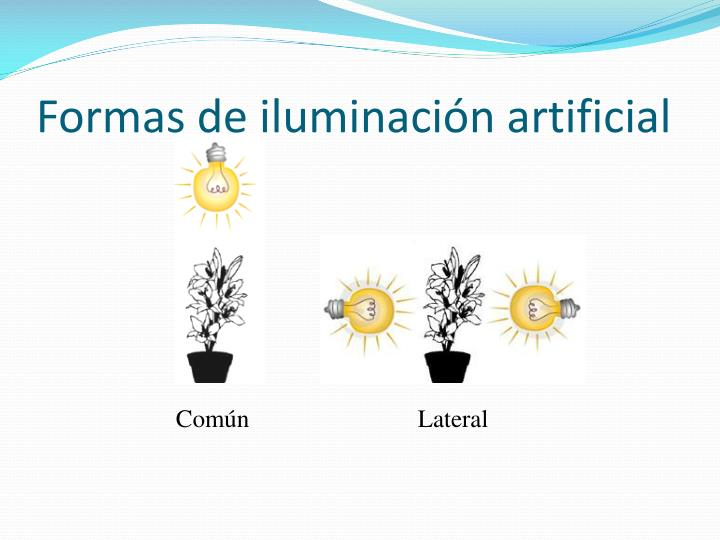 Formas de iluminación artificial