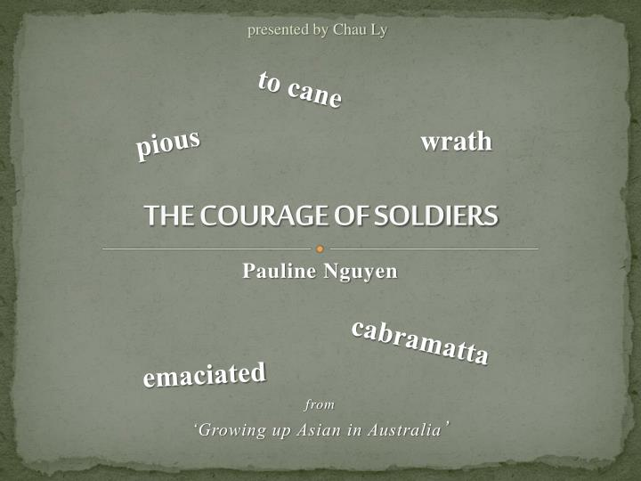 the courage of soldiers n.