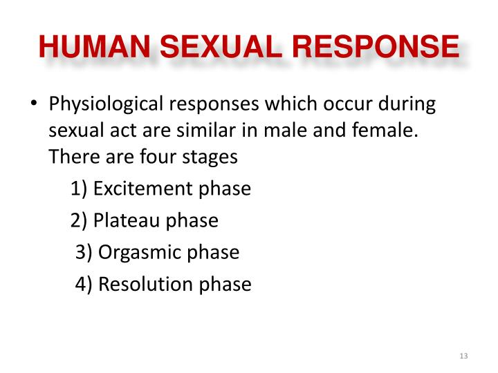 human sexual response essay Start studying human sexual response learn vocabulary, terms, and more with flashcards, games, and other study tools.