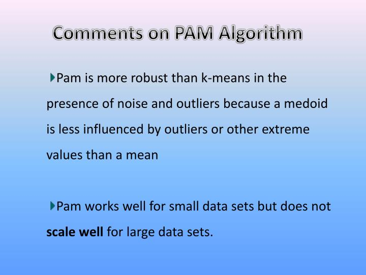 Comments on PAM Algorithm