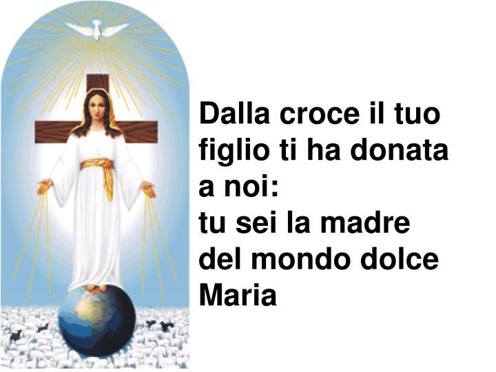 Dalla croce il tuo figlio ti ha donata a noi: